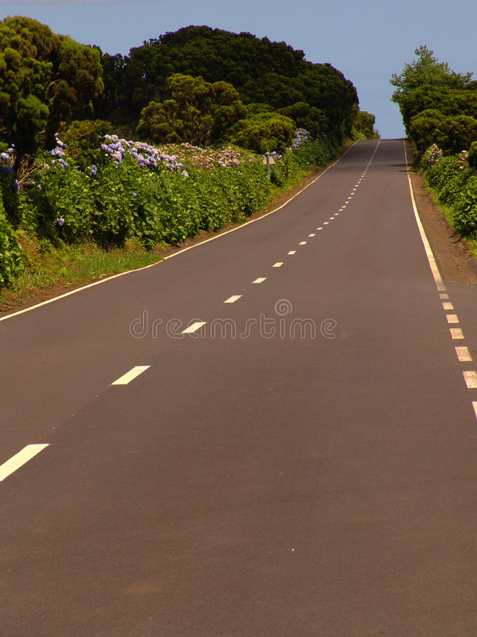Download Road stock image. Image of street, green, blue, road, trees - 452571