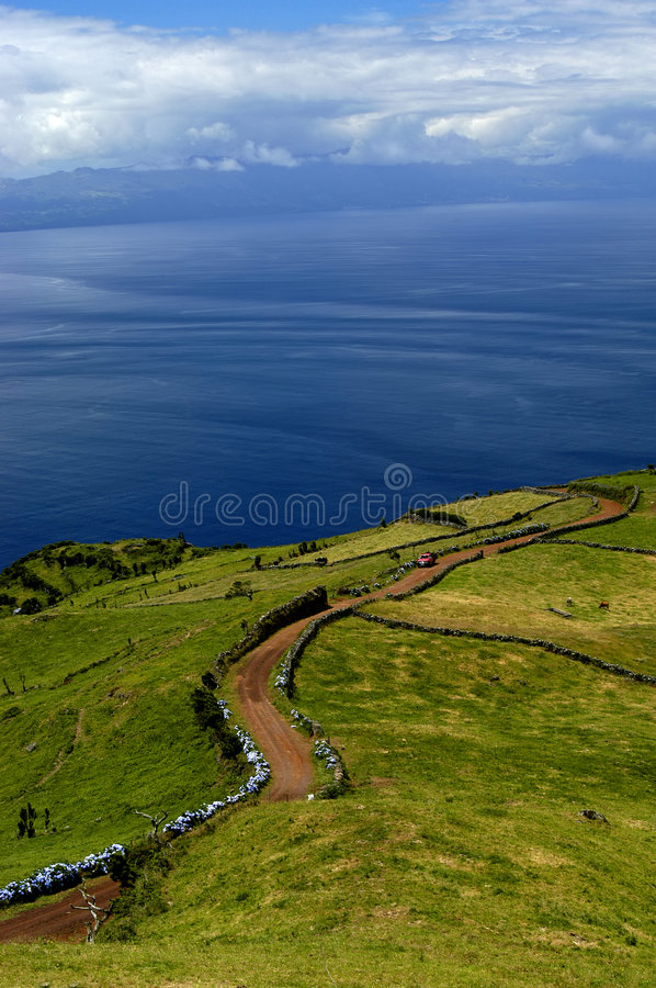 Download Road stock photo. Image of view, azores, blossom, plants - 460824
