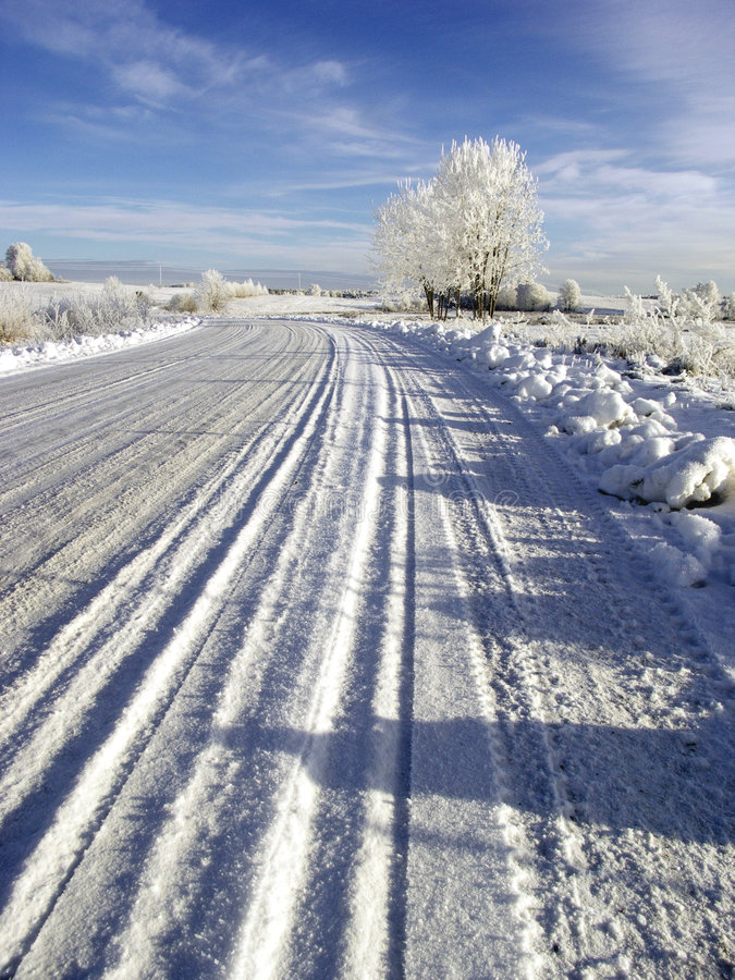 Download Road stock photo. Image of christmas, cloudless, pasture - 462254