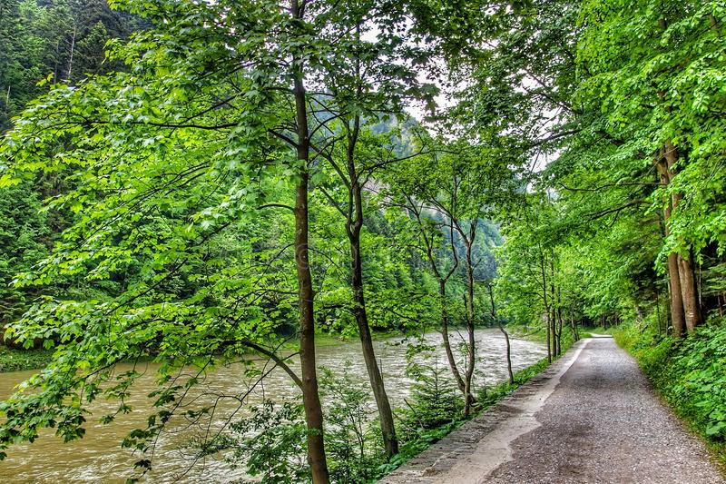 Road along the Dunajec river in Pieniny National Park in southern Poland. View on path next to the river of Dunajec between Szczawnica and Cerveny Klastor in royalty free stock photo