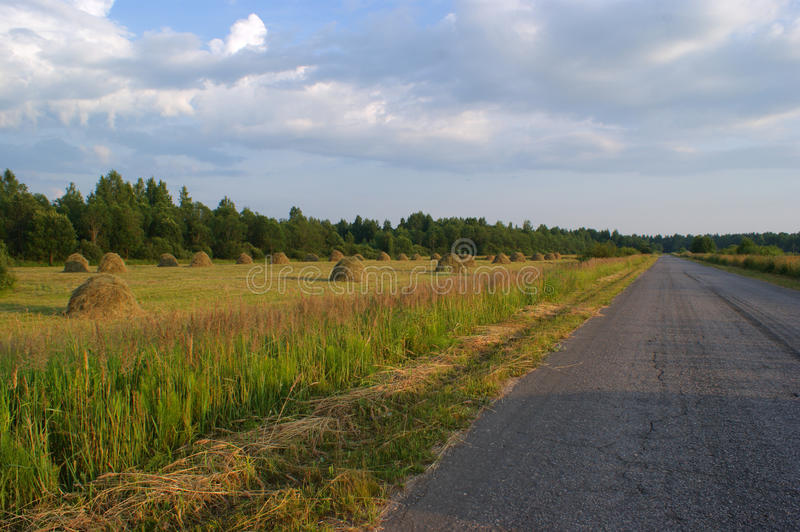 The road along the field- Russia royalty free stock image