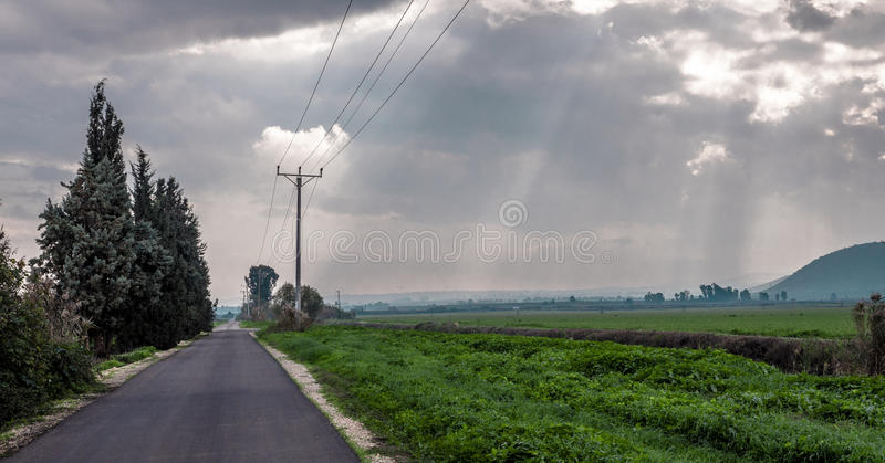 Road along fields royalty free stock photography