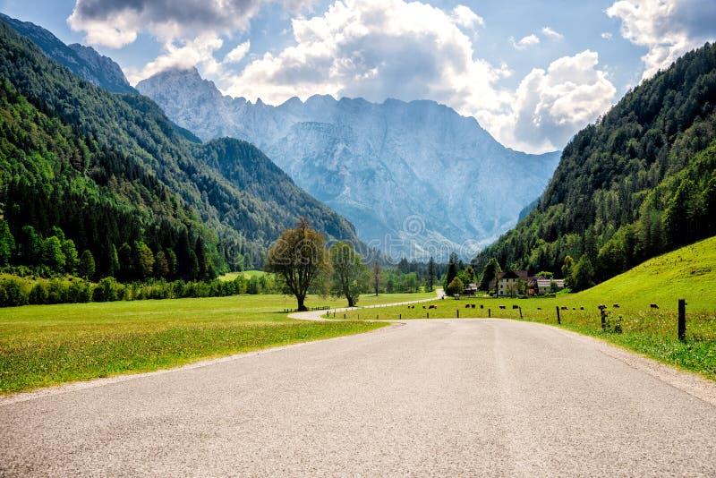 Road through Alps. royalty free stock photo