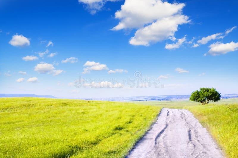Road amongst green meadow stock image