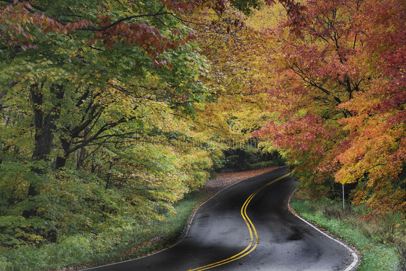 Road in Autumn. Country Road in Autumn Foliage, near Smugglers Notch, Stowe, Vermont royalty free stock image