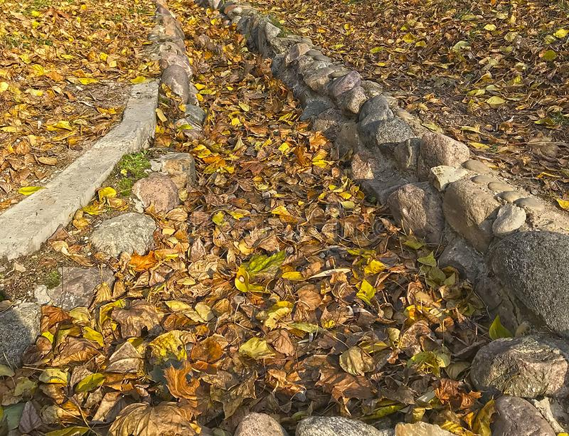 Road of autumn leaves on the rocks stock photos