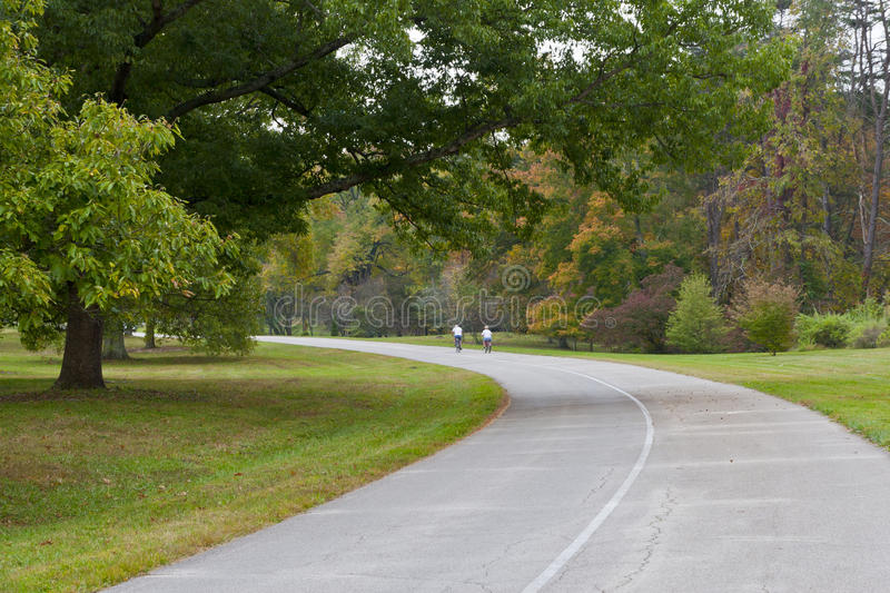 Download Road in autumn park stock image. Image of orange, landscape - 27251721