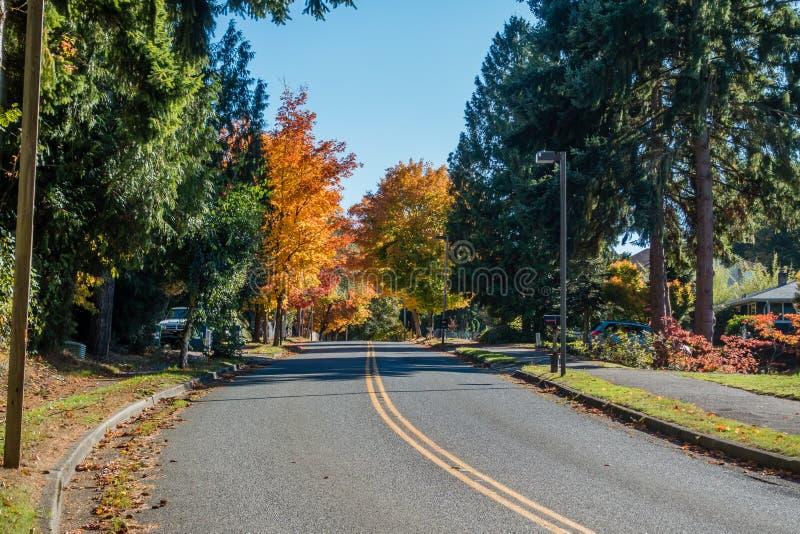Road Into Autumn. A street in Burien, Washington leads toward Autumn trees stock photos