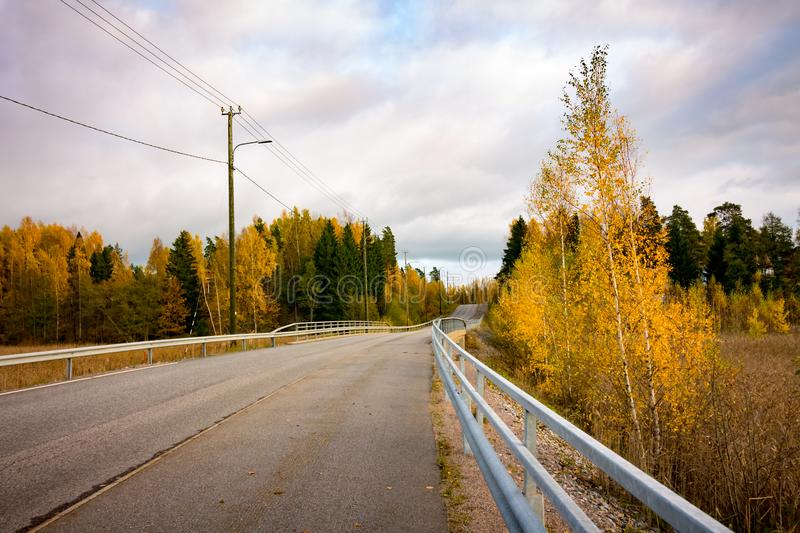 Road in autumn. A tarmac road surrounded by trees in autumn colors royalty free stock photo