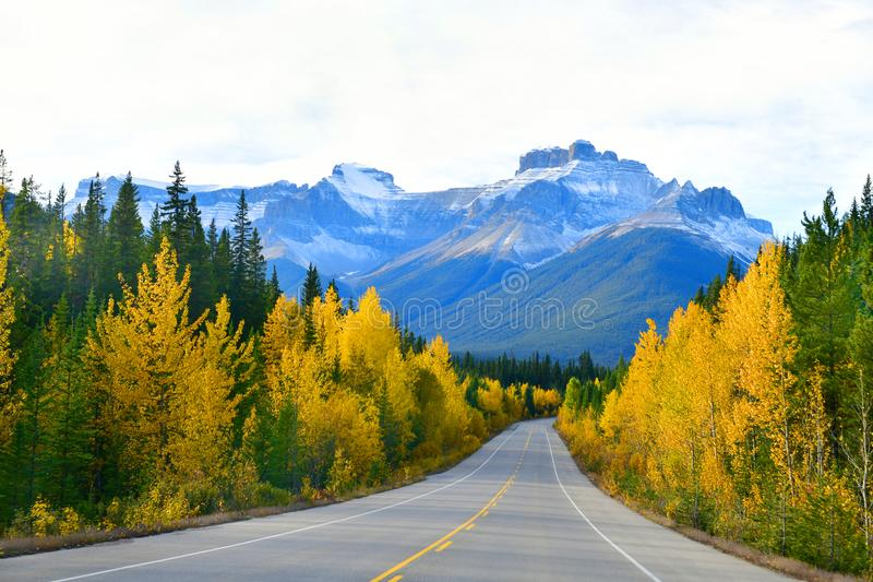 The road 93 beautiful `Icefield Parkway`,Canada. The road 93 beautiful `Icefield Parkway` in Autumn Jasper National park,Canada stock photo