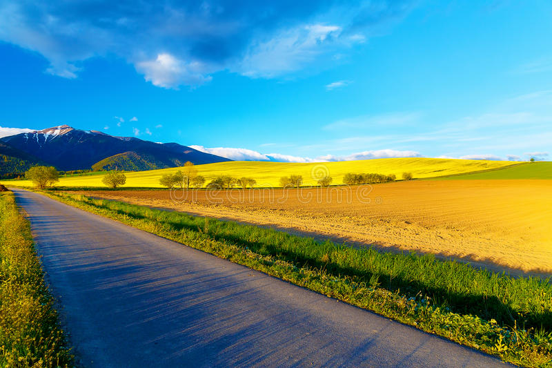 Road in a beautiful land with meadows and blooming field. And snow mountain in background. Slovakia, Central Europe stock photo