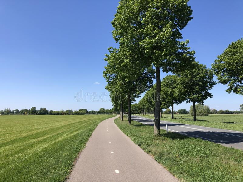 Road and bicycle path around Zelhem. In Gelderland, the Netherlands royalty free stock photography