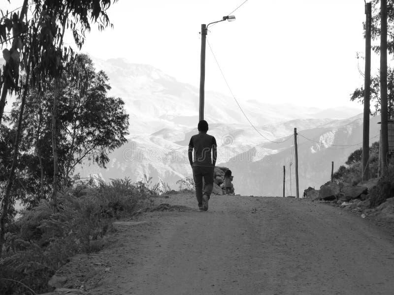 Road, Black And White, Sky, Tree stock photos