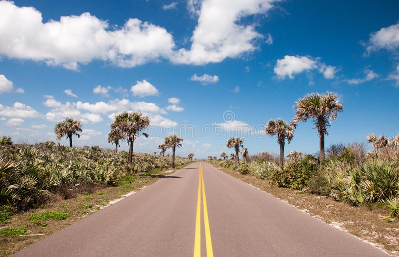 Road through Canaveral. National Seashore stock photo