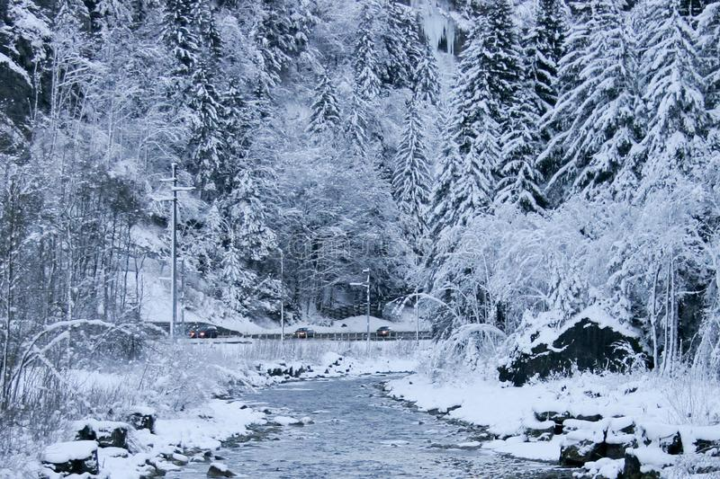 A road with cars cuts through an epic winter wonderland of snow covered trees and stream in the foreground. Beatenberg, Switzerland royalty free stock photo