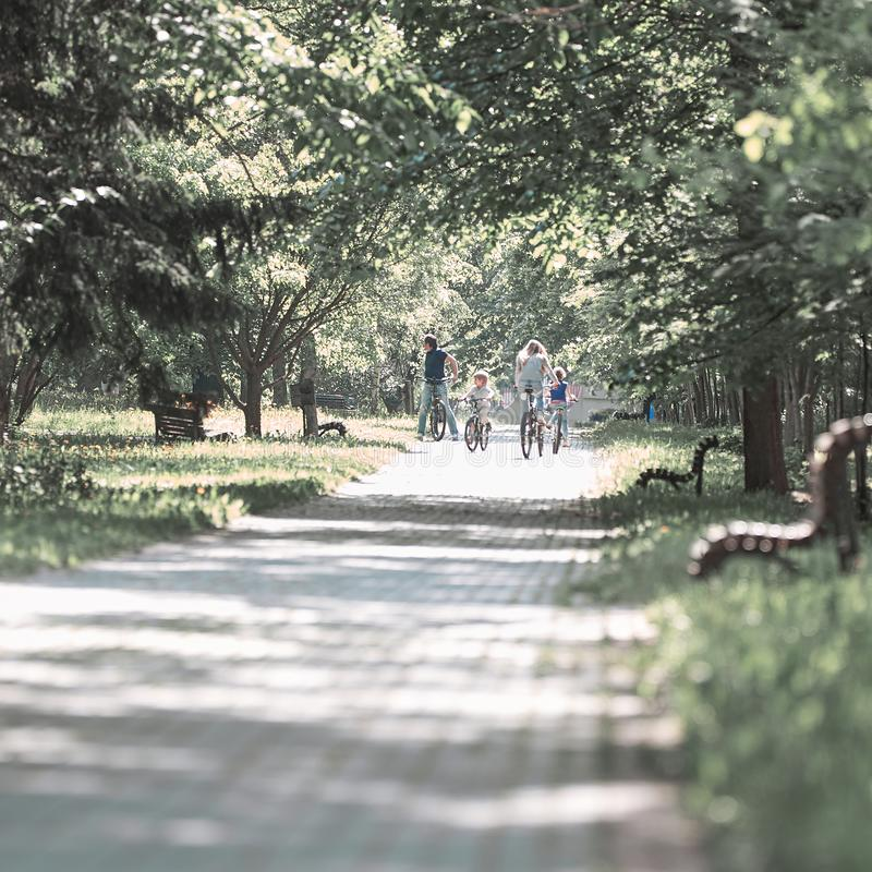 Road of the city Park on a summer day. stock image