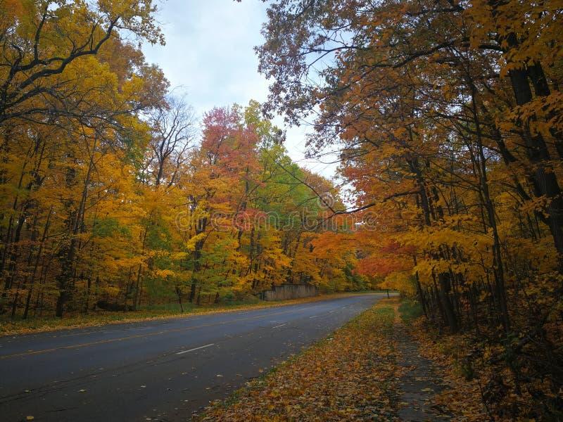 Road through colorful Autumn foliage royalty free stock photos