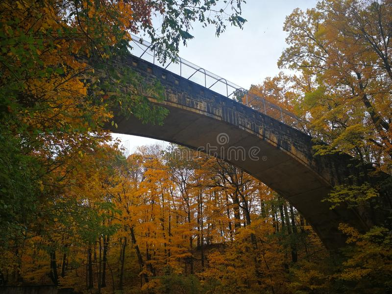 Road through colorful Autumn foliage stock photo