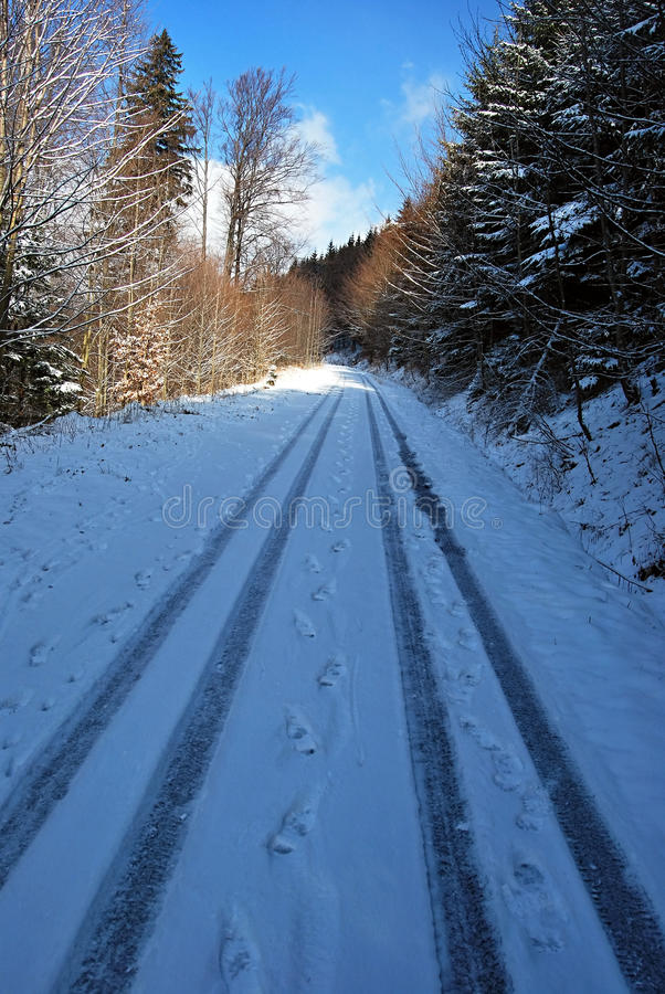 Road covered by snow with trees around. In winter Jeseniky mountains near Vrbno pod Pradedem with blue sky and only few clouds royalty free stock photos