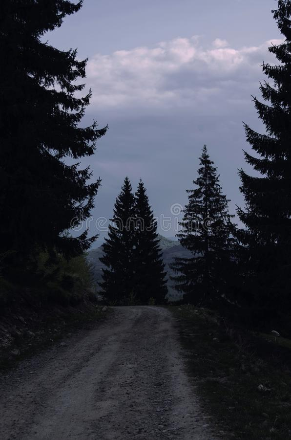 """travelling through the dark essay The poem, """"travelling through the dark"""", depicts the internal conflict between the mind, a sense of responsibility, and heart, the compassion, of the narrator."""