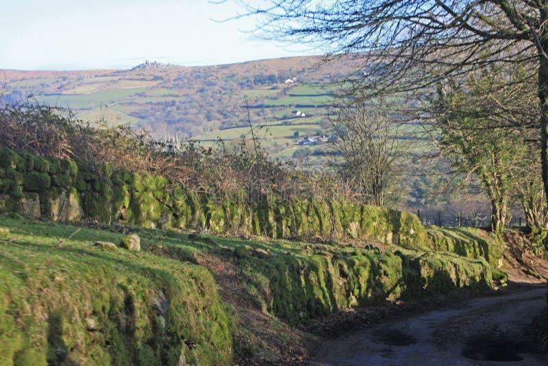 Road on Dartmoor. Country lane in Dartmoor, Devon stock photo