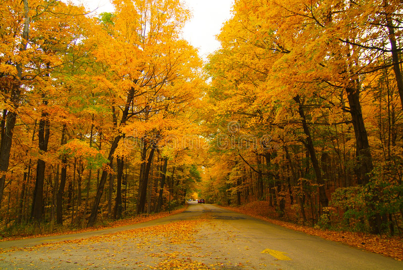 The road into the Fall. The drive into the Great Fall stock image