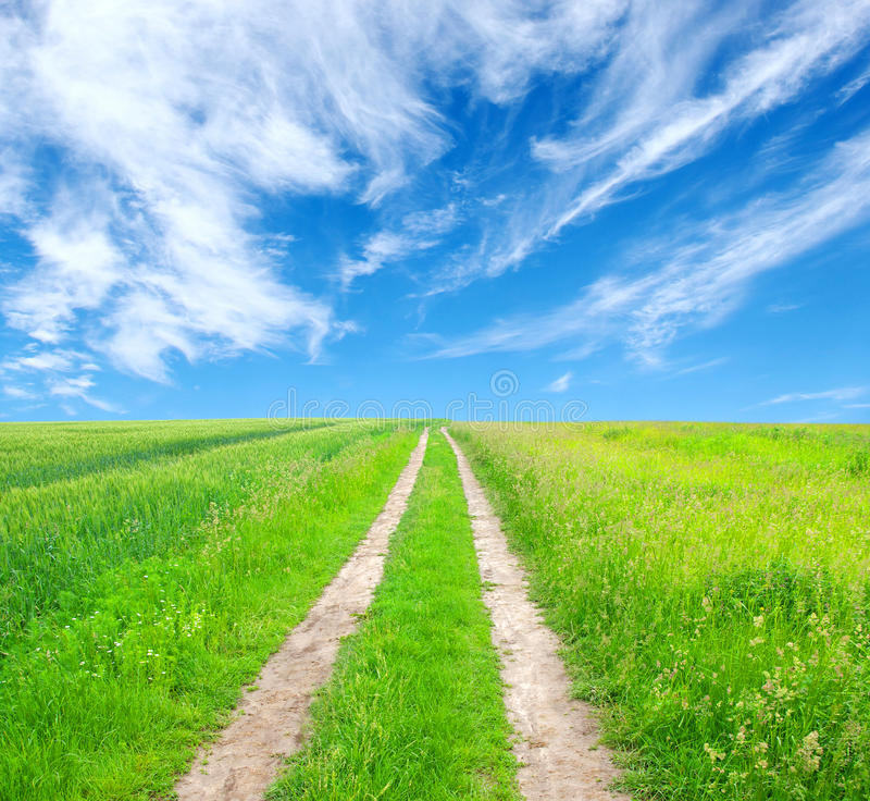 Road In Field Stock Images