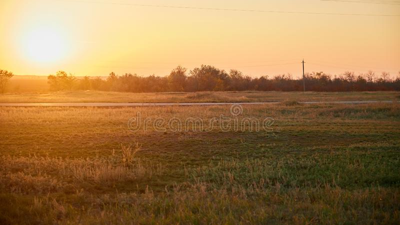 Road in the field at evening sunset stock photo