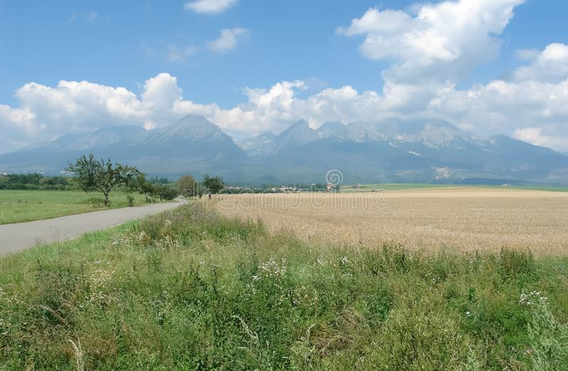 Road, fields and panoramic view of the High Tatras in sunny summer day stock image