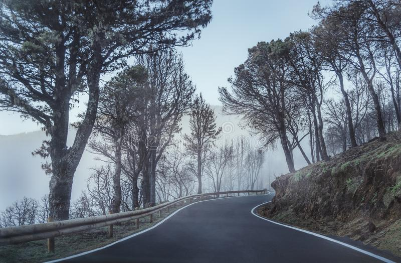 Road in fog. Mountains in Gran Canaria road royalty free stock photo