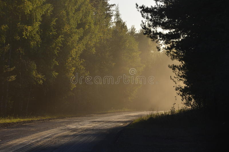 Download Road in  foggy morning stock image. Image of outdoor - 37004337