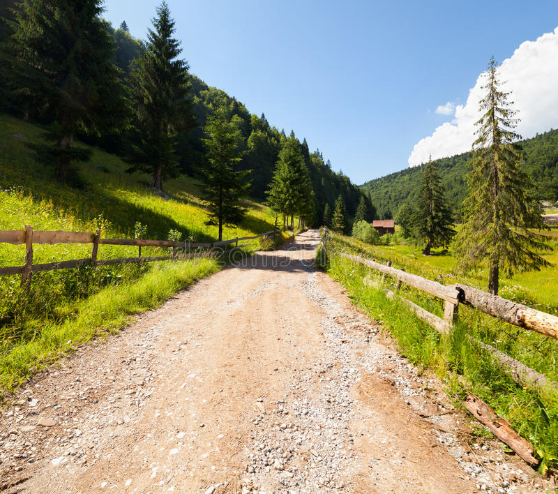 Download Road Through Forest In Mountains Stock Photo - Image: 26021252