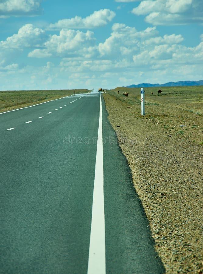 Road in Gobi Desert. Huysiyn govi, Mongolia royalty free stock photo