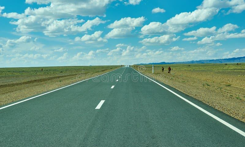 Road in Gobi Desert. Huysiyn govi, Mongolia stock photos