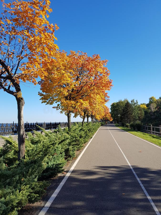 The road goes into the distance. Bright blue sky. Autumn. Trees wiht autumn`s foliage. Autumn walks royalty free stock photo