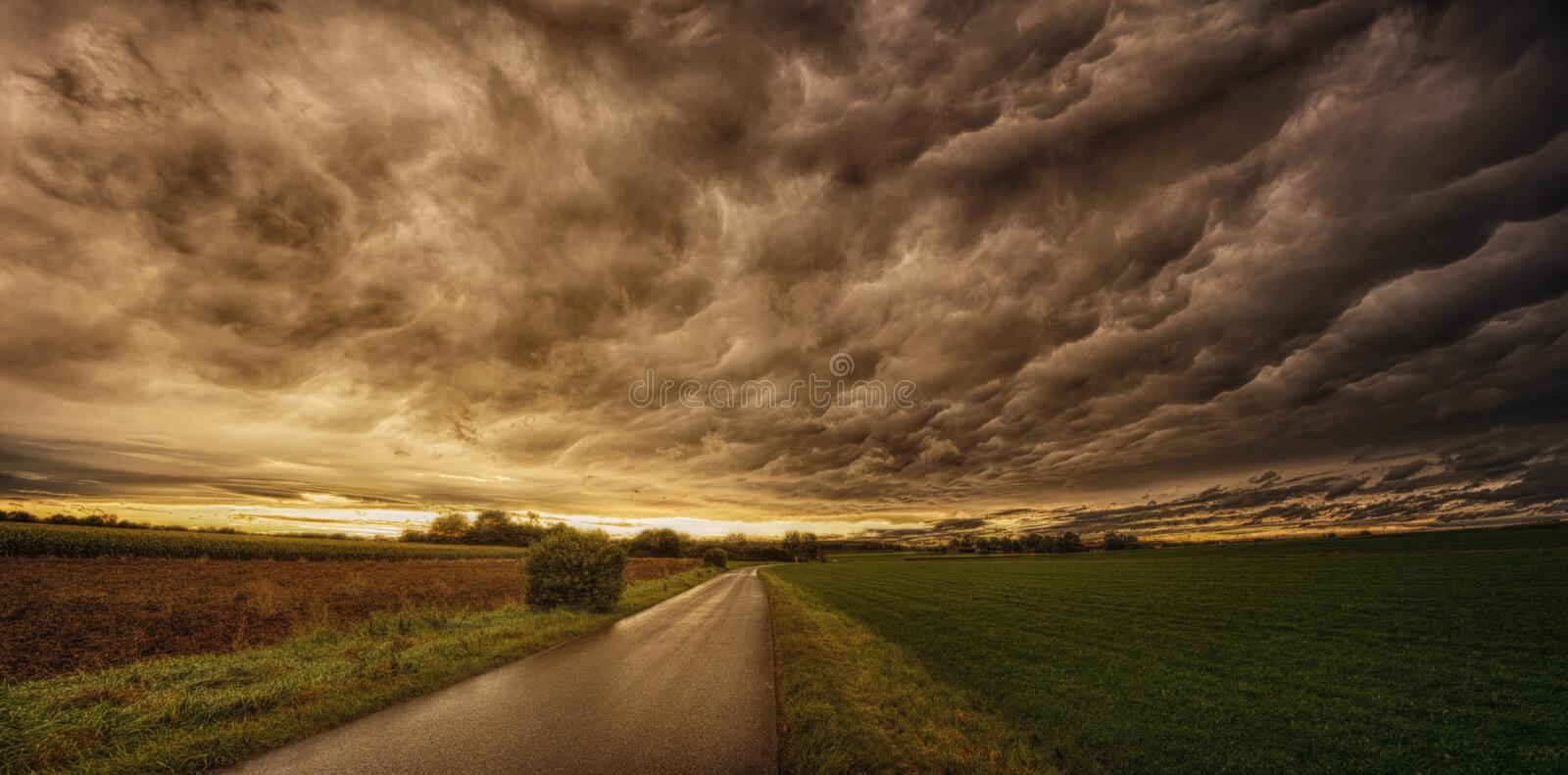 Road In Between Grass Field Under Grey Sky royalty free stock image