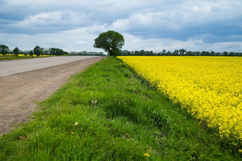Road, grass, sky and a field stock photography