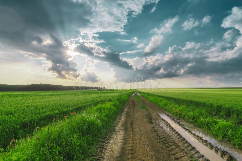 Road through the green field and clouds on blue sky in summer day. Greens, skies, roads, asphalts, blues, empties, fields, summers, days, drives, grasses stock photography