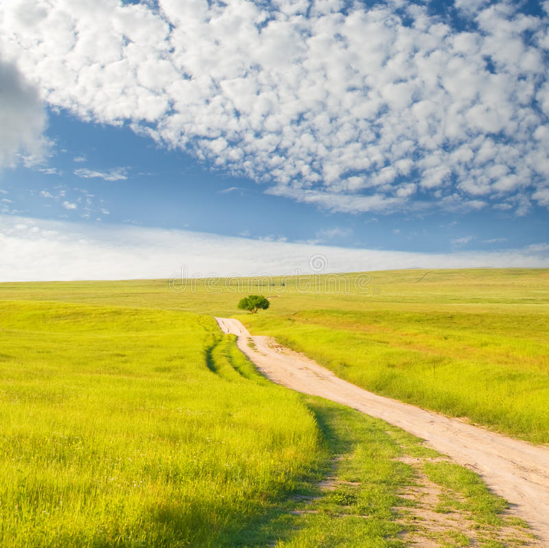 Road on green meadow royalty free stock photos