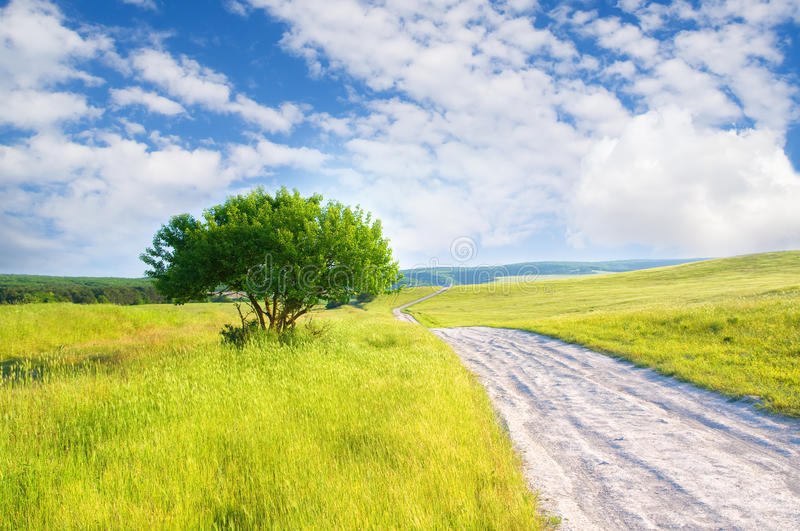Road on green meadow royalty free stock photo