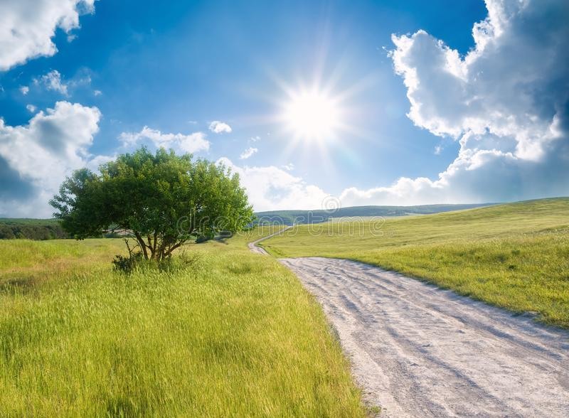 Road on green meadow stock photography