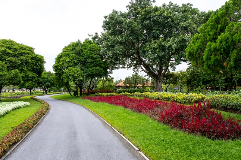 Road and green tree and bush with rock decoration in public park garden and blue sky. Public park at Bangkok stock images