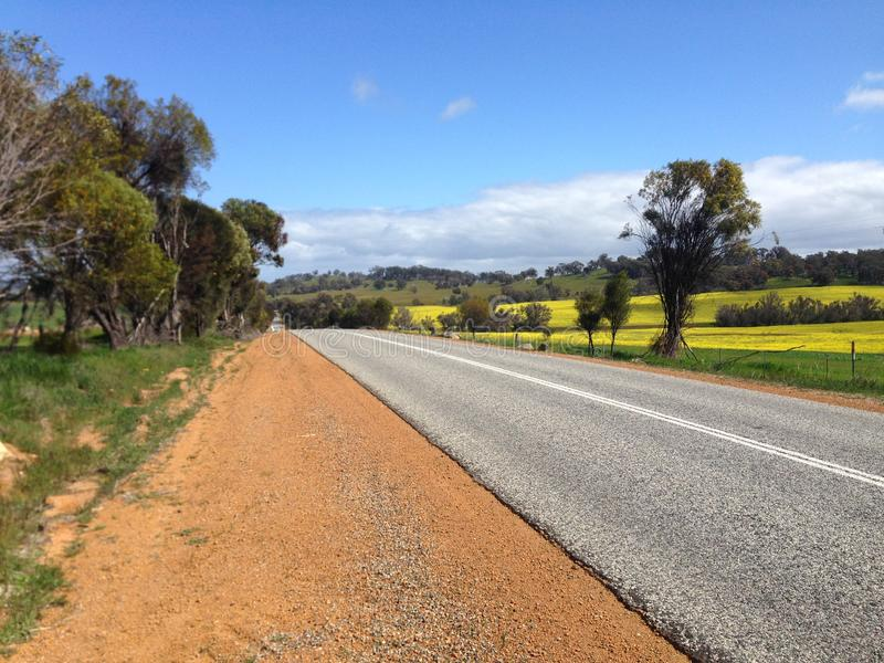 Road with hills green and yellow fields in Australia. An empty tarmac road stretches over a hill between fields and trees in rural Western Australia. The fields royalty free stock photo