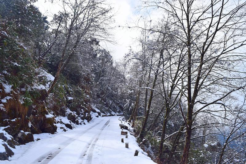 Road through Himalaya Mountains and Trees covered by Snow during Winter, Uttarakhand, India stock photo