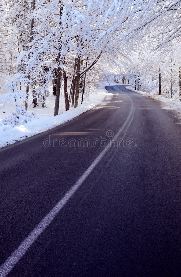 Free Road In Winter Royalty Free Stock Photo - 7630885