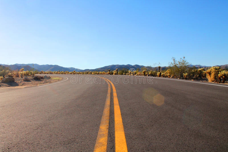 Road in Joshua Tree National Park in the Mojave Desert of California. Elongated curve of a beautiful road with mountains in the background. A lot of Joshua Trees stock images