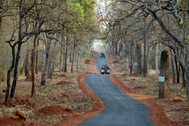Road from jungle, Tadoba National Park, Chandrapur, Maharashtra, India stock photo