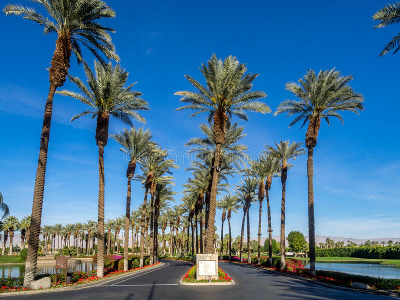 Road into the JW Marriott Desert Springs royalty free stock image