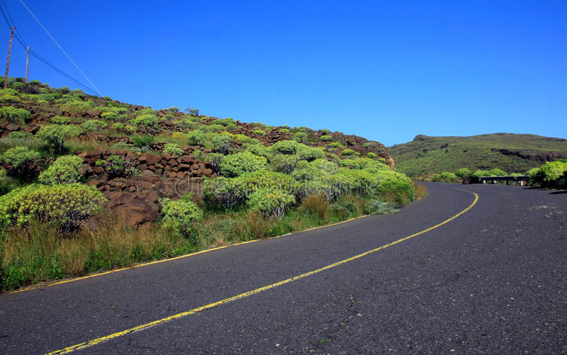 Road in the La Gomera stock images