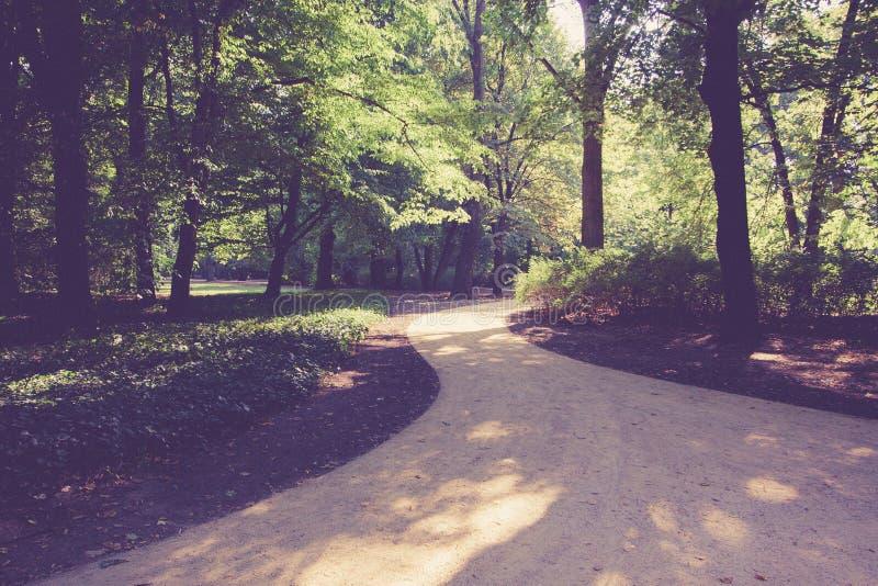 Road in Lazienki park stock photo